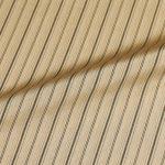striper-earth-txl